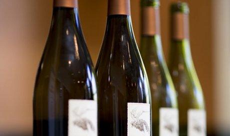 Vin blanc 2019 Cuvée de Florenceà Sarcey
